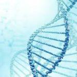 Καρκίνος, διατροφή και μορφή θεραπείας