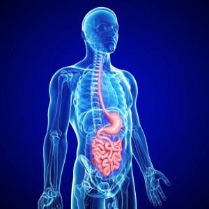 καρκίνος οισοφάγου | karafillides
